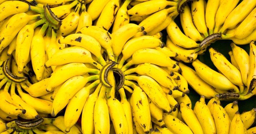 Сколько бананов нужно съесть, чтобы умереть? Шокирующие цифры!
