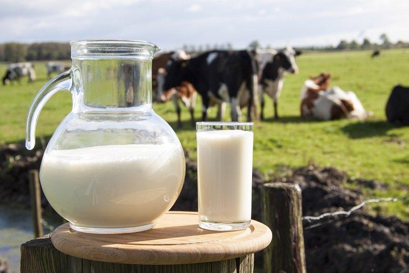 молоко с мёдом от горла