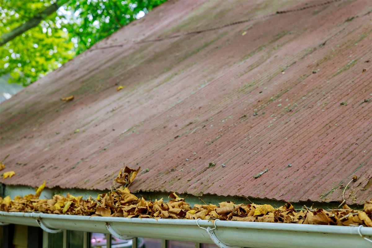 Соседский трюк для защиты водосточной системы, чтобы она не забивалась листьями