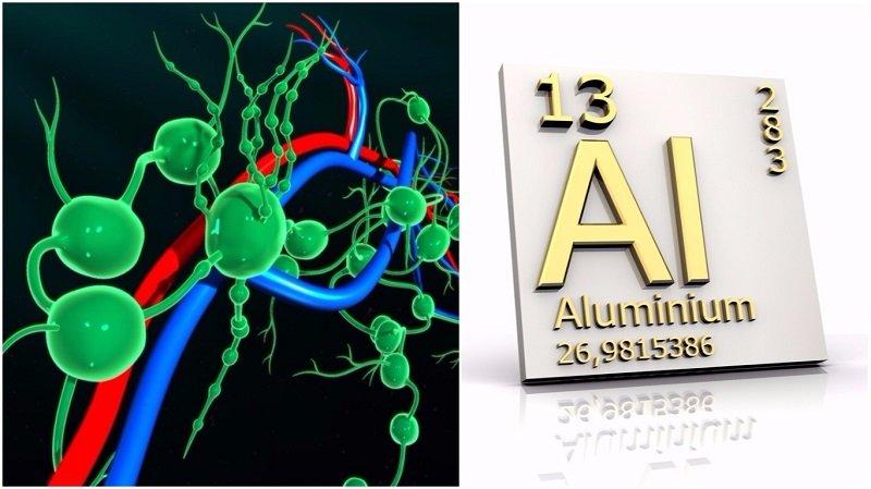 алюминий и лимфатические узлы
