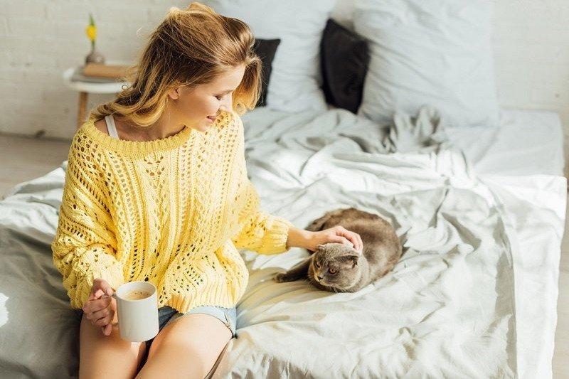Почему женщина может любить кошку сильнее будущего ребенка Вдохновение,Советы,Бизнес,Дети,Работа,Семья