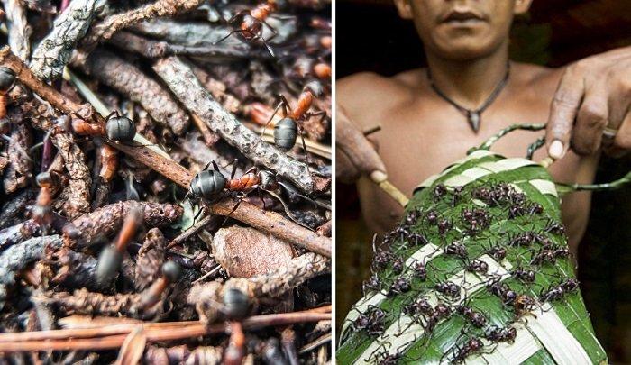 необычные традиции бразилии