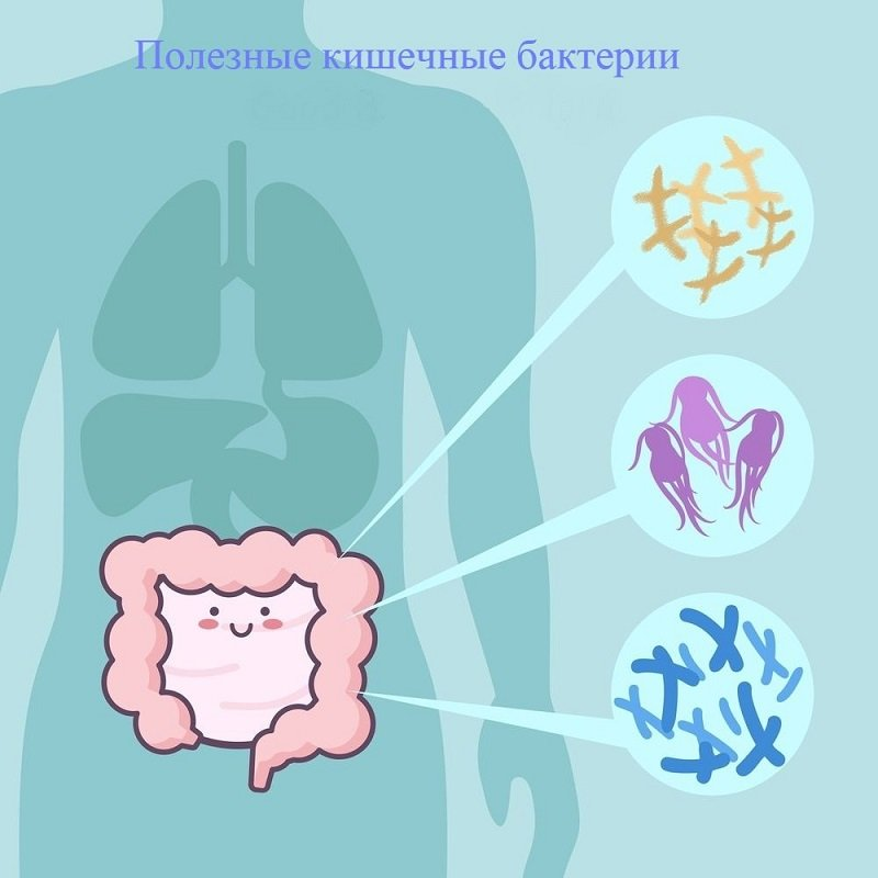 нормализация микрофлоры кишечника у детей