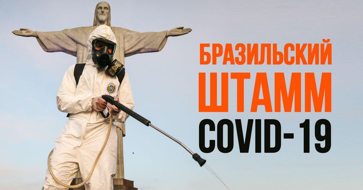 Обнаружен новый штамм коронавируса в Бразилии: что это значит