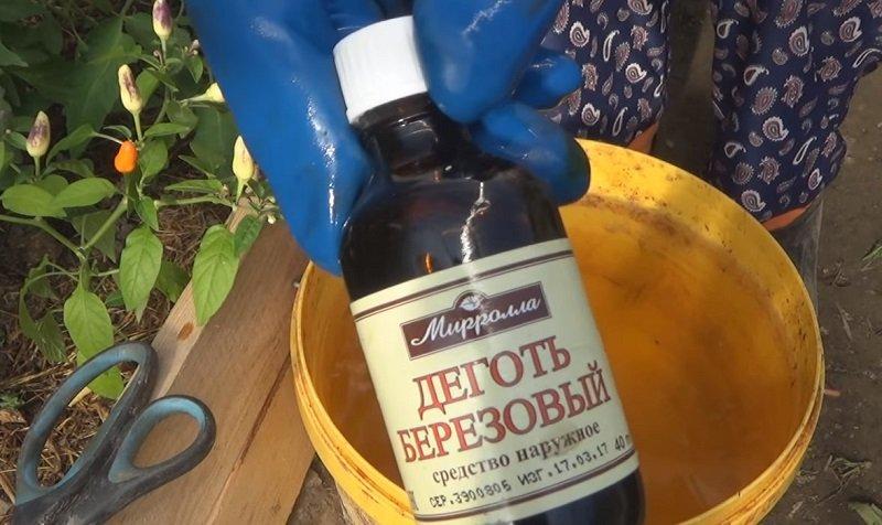 обработка клубники от болезней весной