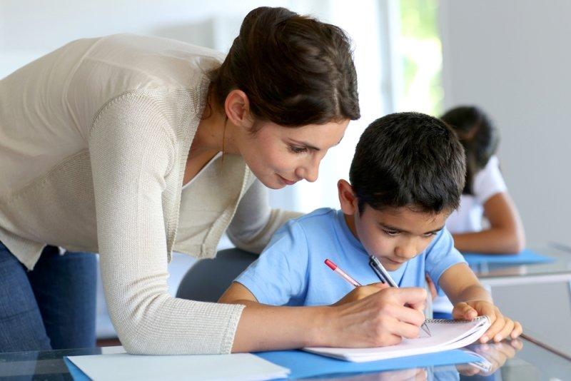 дошкольное и школьное образование во франции