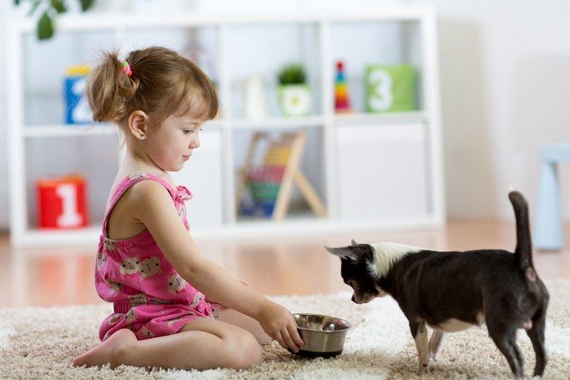 обязанности маленьких детей