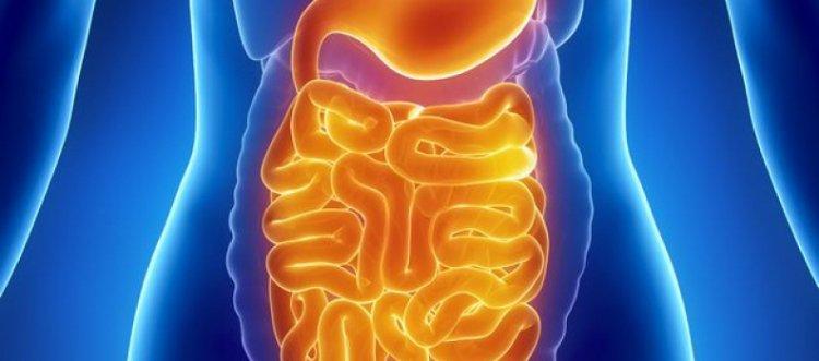 очищение организма от паразитов чесноком и кефиром