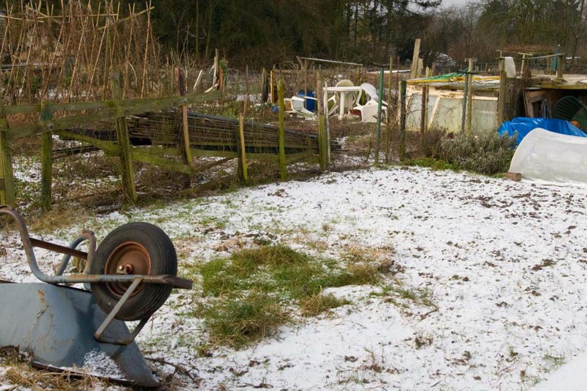 Бабушкины хлопоты на огороде зимой