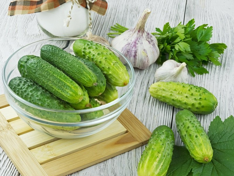 recept na nakladané uhorky