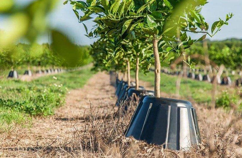 органическое земледелие весенние работы