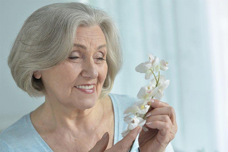 орхидея в домашних условиях после покупки