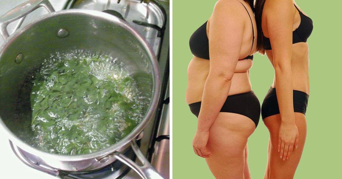 Петрушка для похудения рецепты