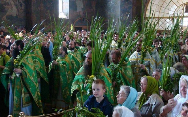 Другой не подойдет! Утром на Троицу отправляюсь в храм: в руках аир, а на голове платок цвета зелени.