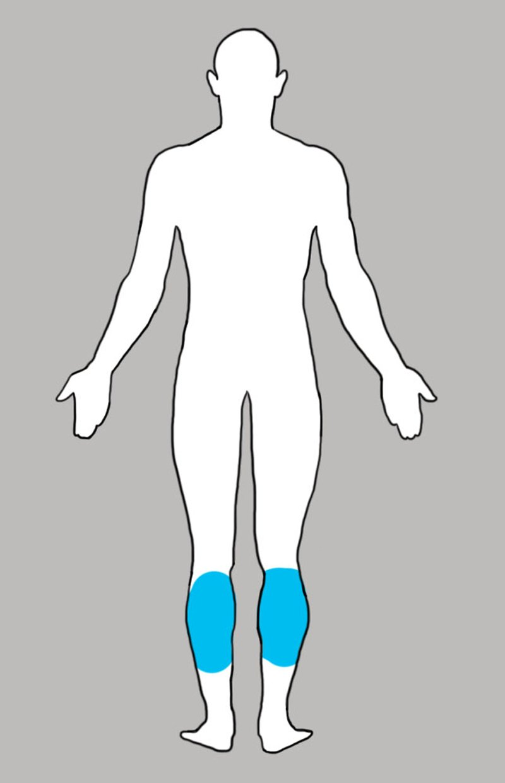 икроножная мышца