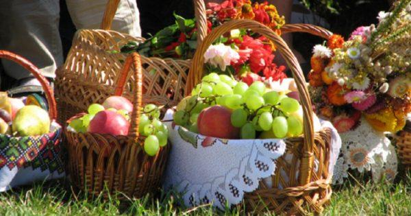 Почему нельзя есть яблоки до Яблочного Спаса: меня давно интересовал этот вопрос!