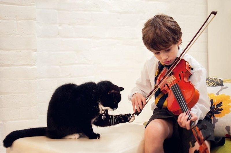 мальчик со скрипкой