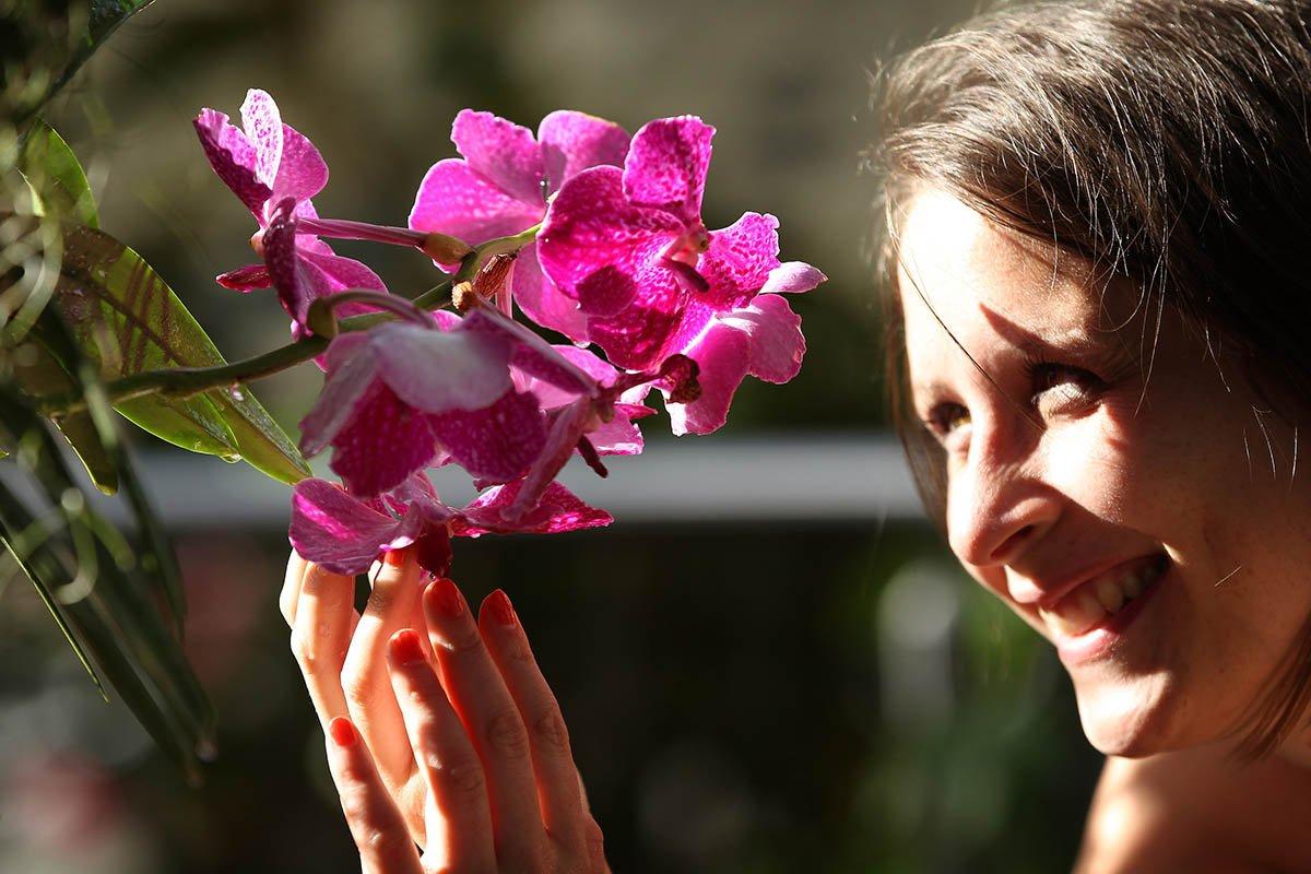 Отчего предательски желтеет орхидея