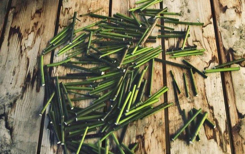 поделки из прутьев и веток своими руками фото