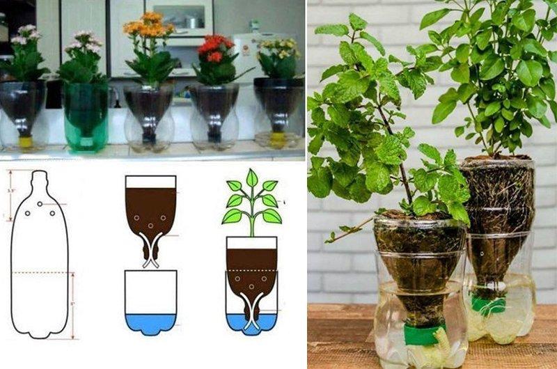Как превратить пластиковые бутылки в полезные вещи Вдохновение,Советы,Дача,Дом,Идеи,Лайфхаки,Пластик,Поделки,Растения