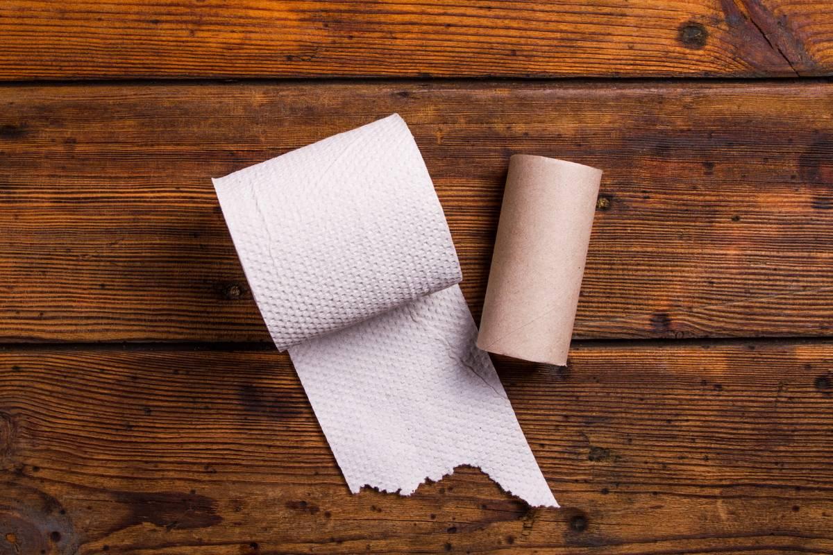 Что интересного можно сделать из втулок от туалетной бумаги