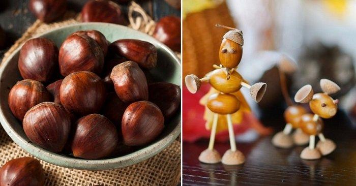 11 вариантов необычных поделок из каштанов и желудей для дома и школьной осенней выставки