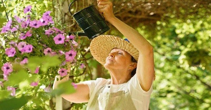 Оригинальные подвесные кашпо от талантливой садовницы из Бельгии: устроила на балконе сад вверх тормашками