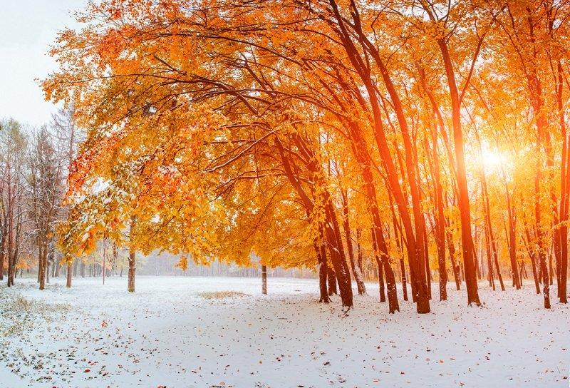 прогноз погоды на зиму 2018