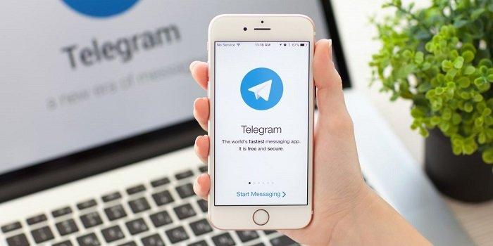 боты телеграм
