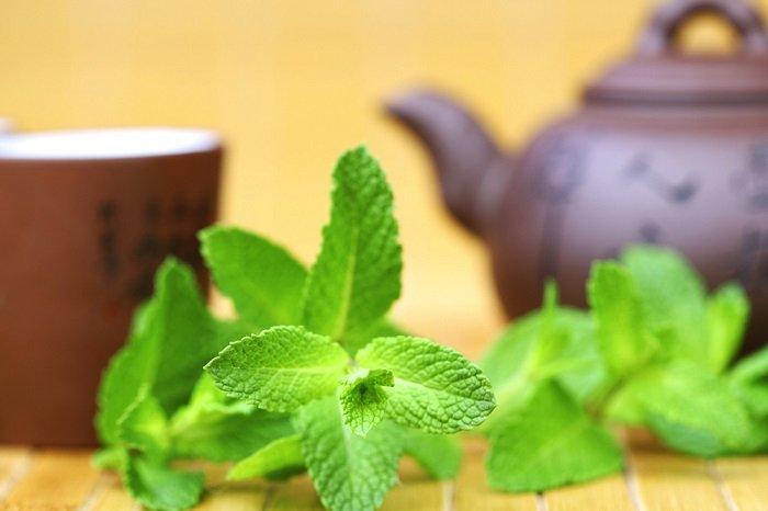 полезные напитки для красоты и здоровья