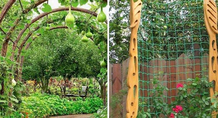 вертикальные опоры для растений