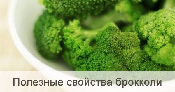 Ты полюбишь брокколи, узнав о ее полезных свойствах! Обязательно добавь в свой рацион.