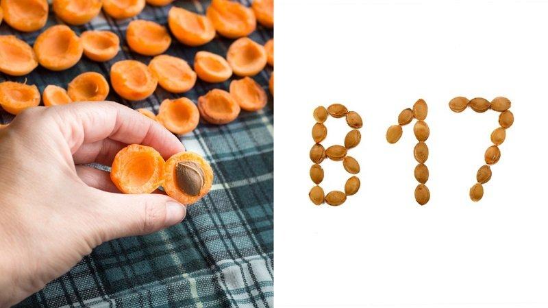 полезные свойства масла абрикосовых косточек