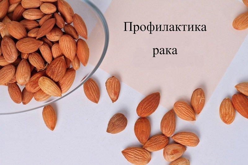 полезные свойства косточек абрикоса