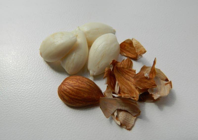 лечебные свойства косточек абрикоса