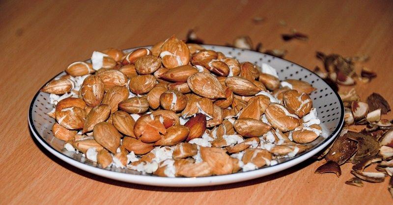лечебные свойства ядер абрикоса