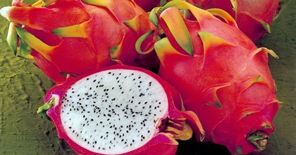 Витаминная бомба! 9 полезных свойств экзотического чуда питахайя.