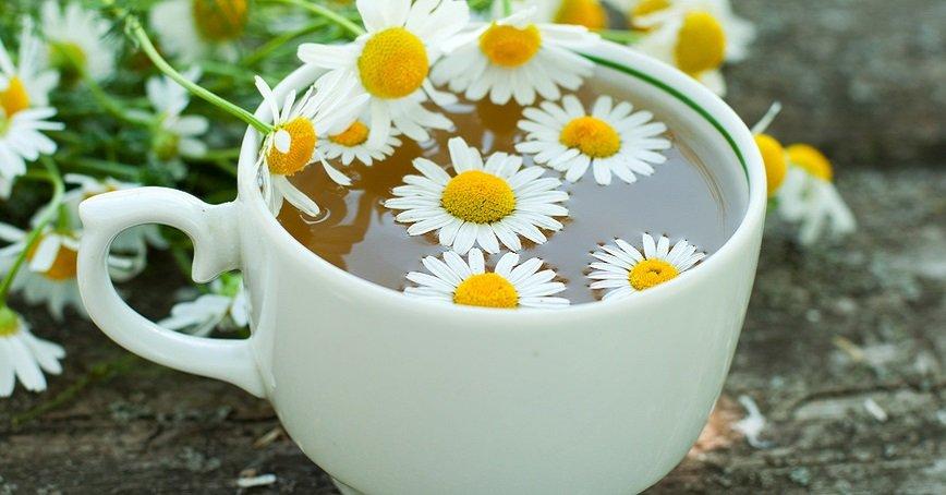 Этот напиток способен предотвратить рак: исключительная польза ромашкового чая.