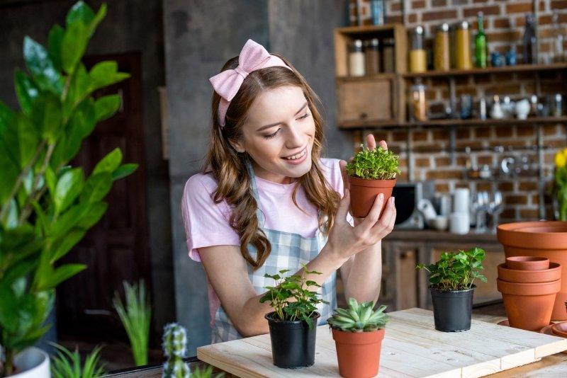 Любимые растения радуют и благодарят за труд!