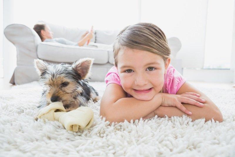 породы собак для детей 12 лет
