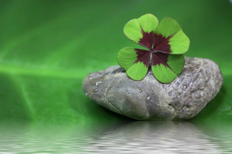 В «зеркальную» дату на Ивана Купала три знака зодиака получат шанс изменить свою жизнь Ивана, Купала, может, будет, стоит, сегодня, значит, можно, теперь, нужно, поворот, удачу, следует, повезет, астрологи, только, станет, знаках, изменить, действительно