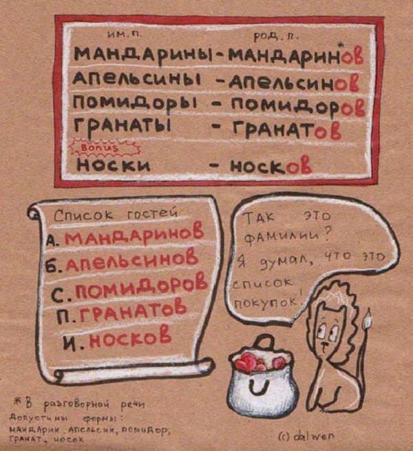 правила русского языка в котах