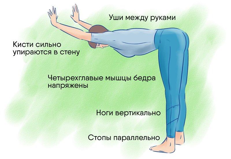 наклоны без веса