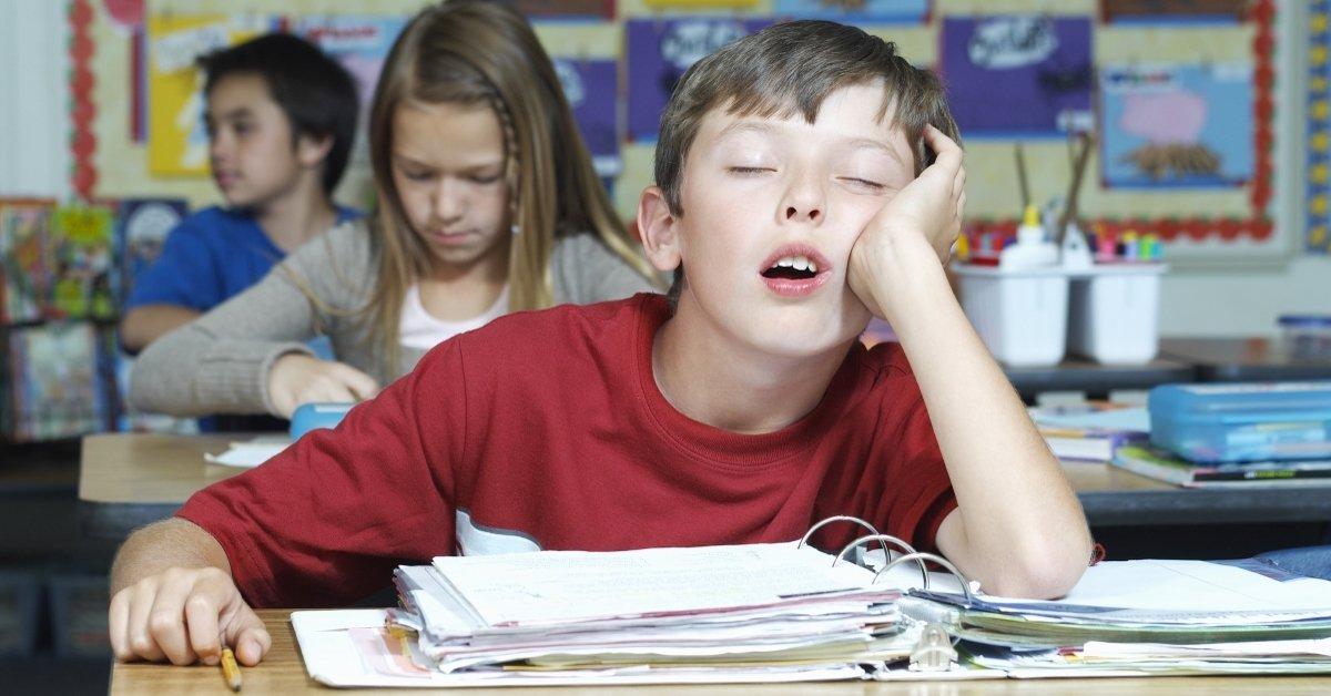 Какие предметы необходимы школьникам как воздух thumbnail