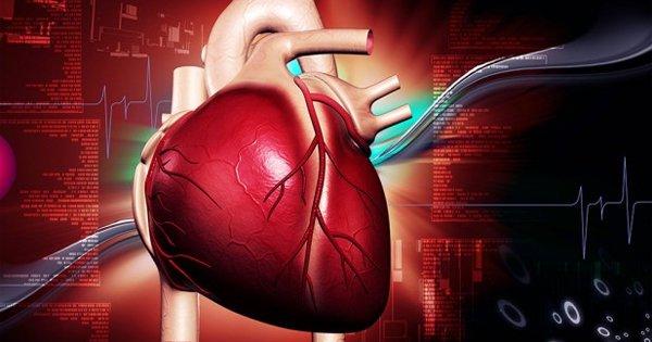 Сенсационное открытие! Ученые доказали, что холестерин не влияет на сердечно-сосудистую систему.