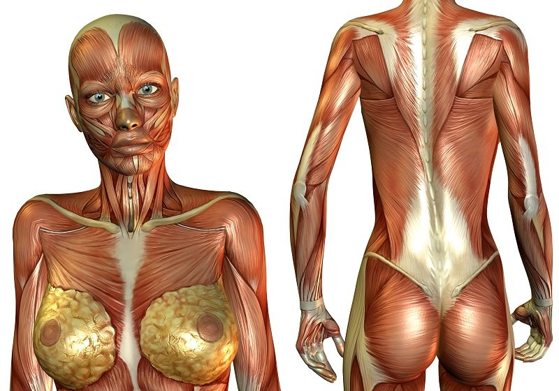 быстрое и эффективное похудение
