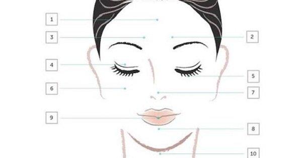 Карта высыпаний на лице: состояние твоей кожи напрямую зависит от работы внутренних органов!