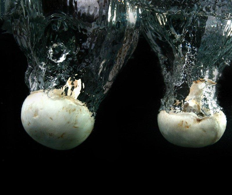 маринованные грибы шампиньоны рецепт на зиму