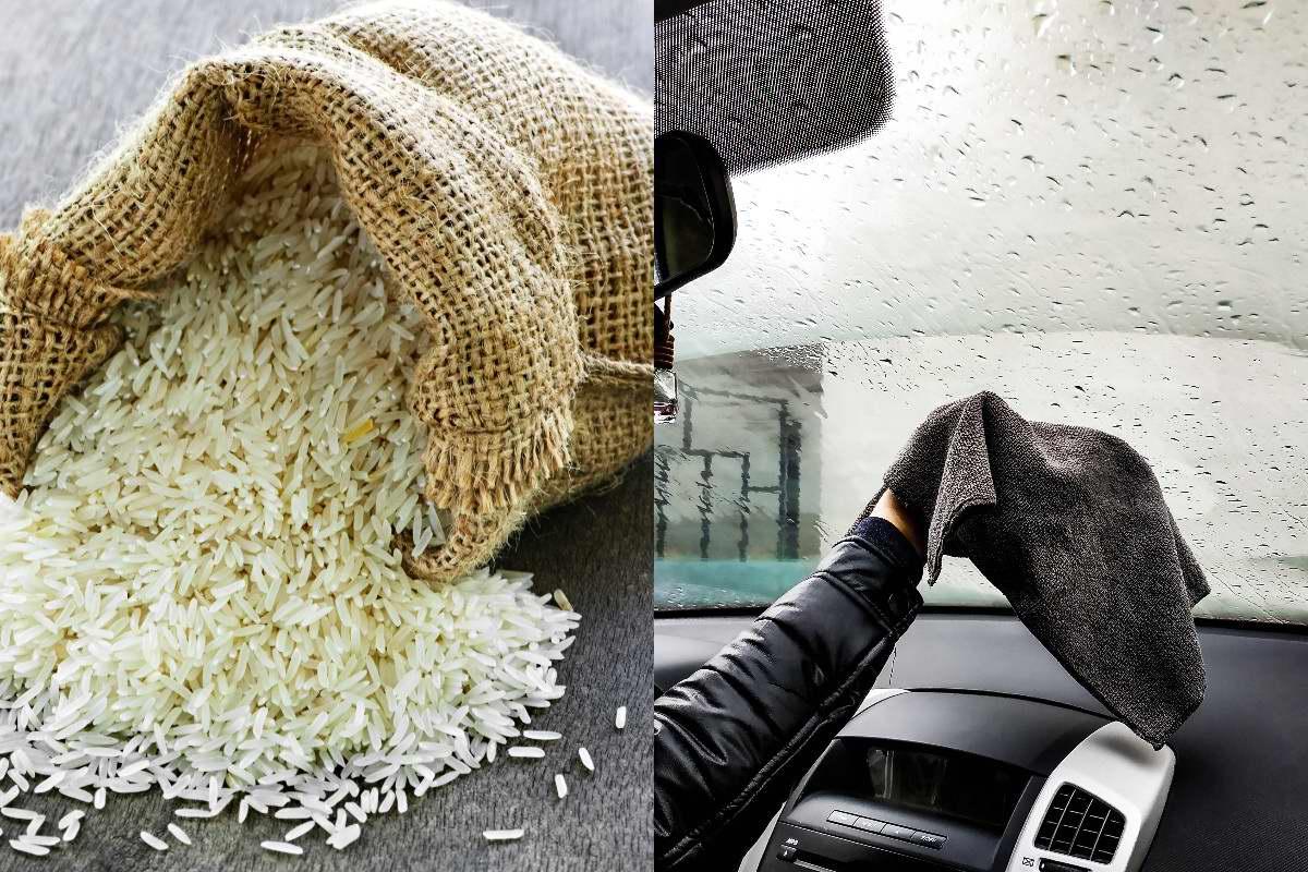 применение риса