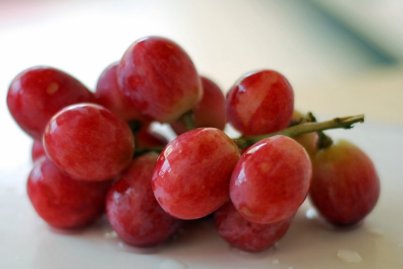 продукты полезные для желудка и поджелудочной